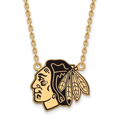 Picture of Chicago Blackhawks Gold Plated Enameled Pendant 18 Inch Necklace