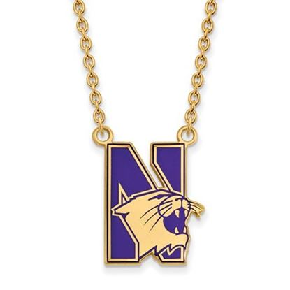 Picture of Northwestern Wildcats Gold Plated Enamel Pendant 18 Inch Necklace